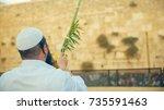 sukkoth in jerusalem | Shutterstock . vector #735591463