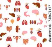 cartoon human internal organs...   Shutterstock .eps vector #735675697