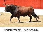 bull   Shutterstock . vector #735726133
