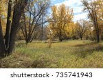 Small photo of Shaded autumn field, Parker