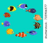 marine life tropical colorful... | Shutterstock .eps vector #735906577