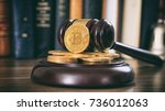 law or auction gavel and...   Shutterstock . vector #736012063