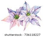 christmas and new year card.... | Shutterstock . vector #736118227