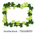 vector poster  banner or... | Shutterstock .eps vector #736168093