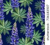 watercolor illustrations of... | Shutterstock . vector #736183507