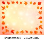 autumn background with leaves.... | Shutterstock .eps vector #736250887