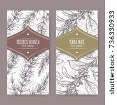 set of two labels with rooibos... | Shutterstock .eps vector #736330933
