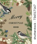 card with birds and evergreens... | Shutterstock .eps vector #736517167
