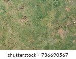 ground with moss texture.... | Shutterstock . vector #736690567