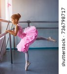 young ballerina in a pink... | Shutterstock . vector #736798717