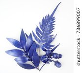 blue leaf design elements.... | Shutterstock . vector #736899007