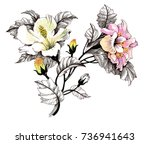 hand drawn painting with... | Shutterstock . vector #736941643