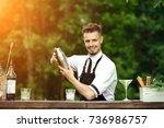 handsome smiling barman shaking ... | Shutterstock . vector #736986757