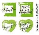 set of organic product  gluten... | Shutterstock .eps vector #737005087