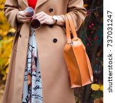 bag in female hands closeup.... | Shutterstock . vector #737031247
