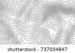 topographic map contour... | Shutterstock .eps vector #737034847