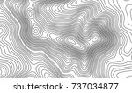 topographic map contour... | Shutterstock .eps vector #737034877