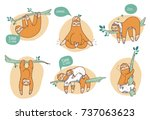 collection of funny sloths in... | Shutterstock .eps vector #737063623