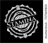 stamina chalkboard emblem | Shutterstock .eps vector #737069803