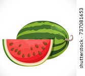 big ripe juicy watermelon the... | Shutterstock .eps vector #737081653