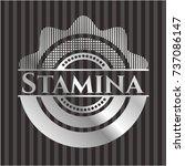 stamina silver badge or emblem | Shutterstock .eps vector #737086147