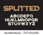 decorative textured bold font... | Shutterstock .eps vector #737131303
