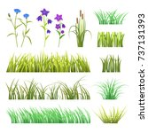 vector green grass herb and... | Shutterstock .eps vector #737131393