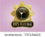 golden emblem with cocktail... | Shutterstock .eps vector #737156623