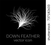 down feather icon | Shutterstock .eps vector #737182633
