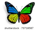 True Butterfly With Fantasy...