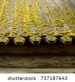 old wooden roof. moss. the roof ... | Shutterstock . vector #737187643