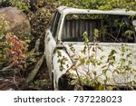Old And Rusty Car In Nature