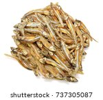 dried anchovies fish isolated... | Shutterstock . vector #737305087