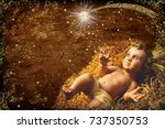christmas greeting card  baby... | Shutterstock . vector #737350753