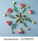 beautiful floral composition... | Shutterstock . vector #737390797