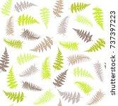 fern frond herbs  tropical...   Shutterstock .eps vector #737397223