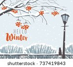 vector winter scene at the snow ... | Shutterstock .eps vector #737419843