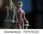 law concept with themis  symbol ... | Shutterstock . vector #737473123