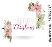 Christmas Winter Poinsettia...