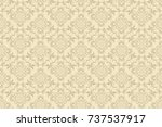 seamless ornament on background.... | Shutterstock .eps vector #737537917