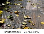 autumn leaves on wooden boards... | Shutterstock . vector #737616547