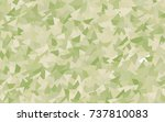 light green  yellow vector... | Shutterstock .eps vector #737810083