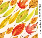 autumn pattern with leaves   Shutterstock .eps vector #737902087