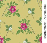 seamless floral pattern with...   Shutterstock .eps vector #737903503