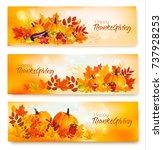 Set Of Happy Thanksgiving...