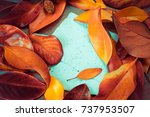autumn background with colorful ... | Shutterstock . vector #737953507