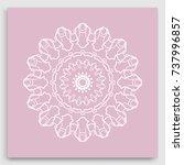 mandala decoration  geometric... | Shutterstock .eps vector #737996857