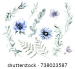 watercolor floral set. hand... | Shutterstock . vector #738023587