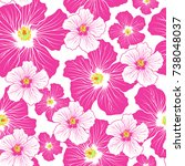hibiscus flowers seamless... | Shutterstock .eps vector #738048037