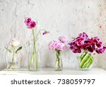 flower arrangement in glassware ... | Shutterstock . vector #738059797